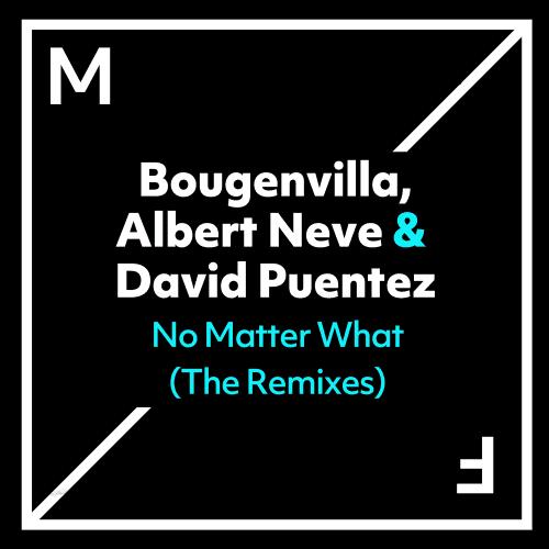 No Matter What (The Remixes)